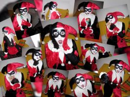 Harley Collage by Poison-Harley