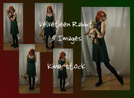 Velveteen Rabbit 2 by kime-stock