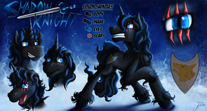 Reference Sheet - Shadow Knight by jamescorck