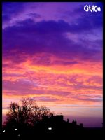 This morning... by citr0n