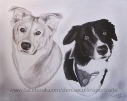 2 dog 11x14 by FlyingFancy1