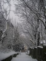 Winter again.. by P-e-y-t-on