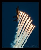 Mud Hen Flares by jdmimages