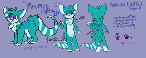 Updated Max ref[Male Fursona] by lonely-galaxies