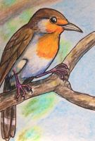 ACEO: Taste of Spring by DanielleMWilliams