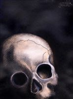 Only a skull by AStoKo