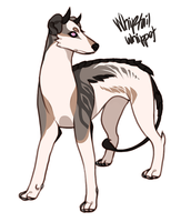 Whiptail Whippet [CLOSED] by Sakokii