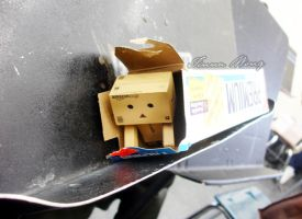 Day 018: Danbo's Homeless by twong314
