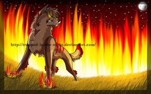 Burn It to the Ground by trapped-in-the-night