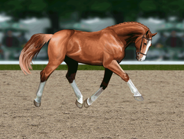 Trot Animation by wideturn