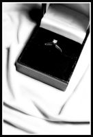 Will you marry me? by Photography-reviewed