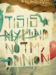 Tis is my mind not my opinion by Pallala