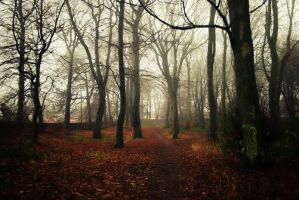 the path to Nevermore... by RickHaigh