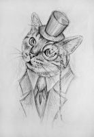 Sir Cat by BenjiiBen