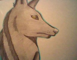 Lone Wolf by Rin-Anko