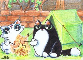 Funny cat Aceo Camping by KingZoidLord