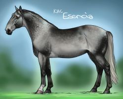 Esencia by sealle