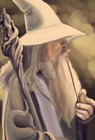 Gandalf by dances-with-hipsters