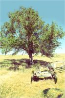 Vintage Tree by chase009