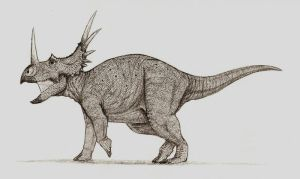 Styracosaurus No.2 by Ahrkeath