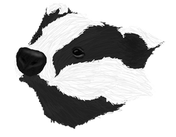 Another badger :3 by Ollis100
