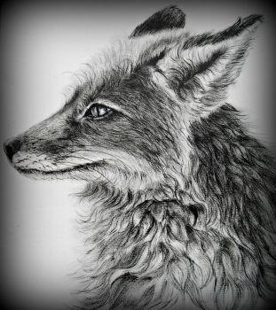 Oil Fox by tiletable