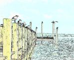 Gulls on Pier Posts by darenw