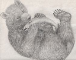 Bear Cub and a Salmon by Ranting-Raven