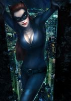 Catwoman by ivangod