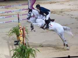STOCK - Equitana 2013-372 by fillyrox
