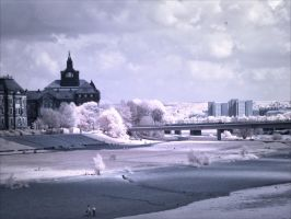 Dresden Pano infrared by MichiLauke