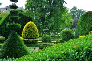 Levens Hall 149 by Forestina-Fotos