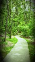 the path less traveled by mandaknows