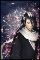 Kuchiki Byakuya SP by Gray-Fullbuster