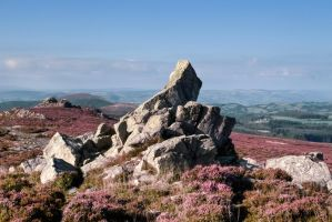 Stiperstones 02092014 by CharmingPhotography