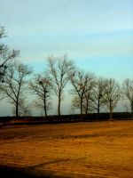 landscapes. by ania1251