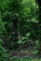 grave yard stock 14 by rustymermaid-stock