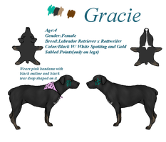 Gracie Ref by EumyCookie