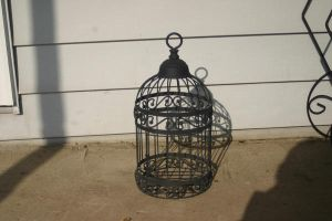 Bird Cage 1 by cstarr-stock