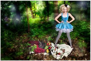 Alice in Wonderland by hecht