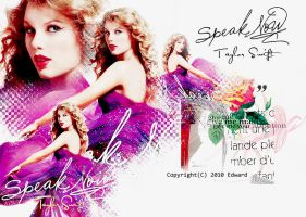 20100819 Taylor Swift by EdwardHuaBin