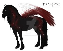 Eclipse by Coldwell-Hill