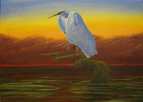 """Great White Egret"" by tatopainting"