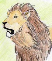 Lion by Sulmeldis-Ithilwen