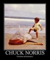 Chuck Norris by cosenza987