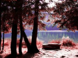 Lacul Sf Ana by Dirrtylittlething