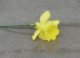 Yellow Flower II by CryRainDrops