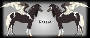 Kalem Ref by Drasayer