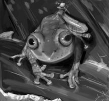 Froggie Practice by Dragor