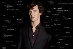 Sherlock - Self Deductions by toledude